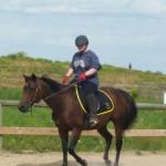 Chelsea - Paint horse (13 anni)