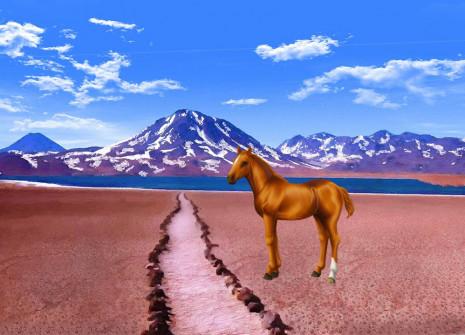 Un nuovo venuto all'interno del Sacchetto sorpresa: adottate il cavallo cileno!